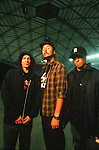 Various portrait sessions and live photographs of the musical group, Primus