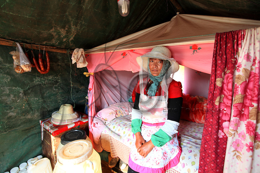 Luoping, Yunnan. Une apicultrice dans sa tente qui est également sa maison pendant les huit mois de l'année ou les apiculteurs voyagent de fleurs en fleurs.<br /> Luoping, Yunnan. A beekeeper in her tent, which is also her home for the eight months out of the year when the beekeepers travel from flowering field to flowering field.