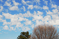 Altocumulus castellanus clouds drift across an azure sky over Norman Oklahoma. Such clouds can be an indicator of substantial mid-level instability favorable for the development of severe thunderstorms.