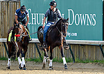 LOUISVILLE, KY - MAY 02: Nyquist, trained by Doug O'Neill and owned by Reddam Racing LLC, walked two miles during morning workouts for the Kentucky Derby and Kentucky Oaks at Churchill Downs on May 2, 2016 in Louisville, Kentucky. (photo by John Voorhees/Eclipse Sportswire/Getty Images)