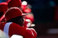 Jermaine Curtis (5) of the Springfield Cardinals in the dugout during a game against the Frisco RoughRiders on April 16, 2011 at Hammons Field in Springfield, Missouri.  Photo By David Welker/Four Seam Images