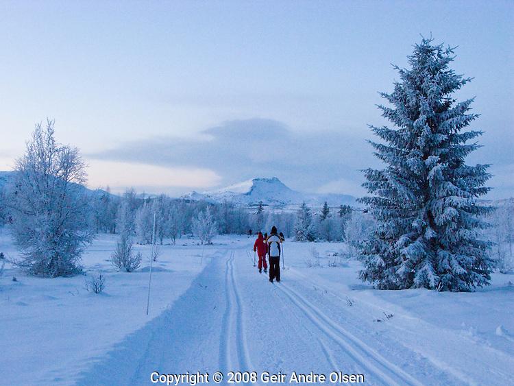 Three skiiers enjoying beautiful tracks at dawn at Venabygdsfjell in the Norwegian mountains.