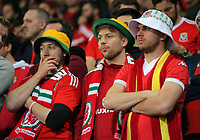Disappointed Wales fans watch the game during the FIFA World Cup Qualifier Group D match between Wales and Republic of Ireland at The Cardiff City Stadium, Wales, UK. Monday 09 October 2017