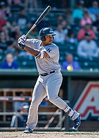 23 June 2019: Trenton Thunder designated hitter Chris Gittens in action against the New Hampshire Fisher Cats at Northeast Delta Dental Stadium in Manchester, NH. The Thunder defeated the Fisher Cats 5-2 in Eastern League play. Mandatory Credit: Ed Wolfstein Photo *** RAW (NEF) Image File Available ***