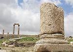 Hercules Temple views from citadella
