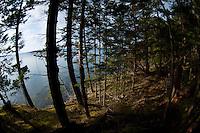 Jones Island State Park, San Juan Islands, Washington, US