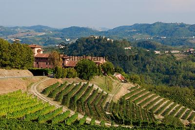 "Italien, Piemont, Region Monferrato: Weingut ""Tenuta la Tenaglia"" bei Serralunga di Crea   Italy, Piedmont, Region Monferrato: wine growing estate ""Tenuta la Tenaglia"" near Serralunga di Crea"