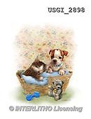 GIORDANO, CUTE ANIMALS, LUSTIGE TIERE, ANIMALITOS DIVERTIDOS, paintings+++++,USGI2898,#AC# ,dogs