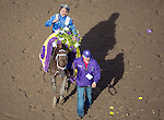 ARCADIA, CA - NOV 04: Mike Smith, aboard Tamarkuz #8, celebrates after winning the Breeders' Cup Las Vegas Dirt Mile at Santa Anita Park on November 4, 2016 in Arcadia, California. (Photo by Michael McInally/Eclipse Sportswire/Breeders Cup)