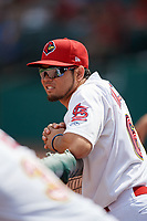 Memphis Redbirds Breyvic Valera (68) in the dugout during a game against the Iowa Cubs on May 29, 2017 at AutoZone Park in Memphis, Tennessee.  Memphis defeated Iowa 6-5.  (Mike Janes/Four Seam Images)
