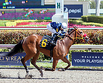 HALLANDALE BEACH, FL - FEB 17:Starcloud #6 trained by Oscar M. Gonzalez with Albin Jimenez in the irons wins the $60,000 Queen Mother Claiming Stakes at Gulfstream Park on February 17, 2018 in Hallandale Beach, Florida. (Photo by Bob Aaron/Eclipse Sportswire/Getty Images)