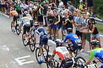 2021 UEC Road Cycling European Championships. Trento, Italy on September 12, 2021. Elite Men Road Race, Bauke Mollema (NED), Harm Vanhouche (BEL), Warren Barguil (FRA), Diego Ulisssi (ITA) and Joao Almeida (POR)