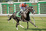 20 JUN 2010: Grade I stakes placed Straight Story, Elvis Trujillo up, wins an Allowance race at Monmouth Park.