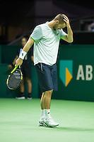 Rotterdam, The Netherlands, February 12, 2016,  ABNAMROWTT, Viktor Troicki (SBR)<br /> Photo: Tennisimages/Henk Koster