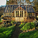 Greenhouse in late afternoon light, mid December.