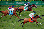 LOUISVILLE, KY - MAY 07: Rainha Da Bateria #9 (L), ridden by Javier Castellano, Bureau de Change #5 (C), ridden by Joel Rosario, and She's Not Here #7 (R), ridden by Mike Smith, pass the grandstands for the first time during the Churchill Distaff Turf Mile on May 7, 2016 in Louisville, Kentucky. Tepin #1, ridden by Julien Leparoux, (not pictured) won the race. (Photo by Jon Durr/Eclipse Sportswire/Getty Images)