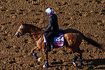 November 3, 2020: Editor At Large, trained by trainer Chad C. Brown, exercises in preparation for the Breeders' Cup Juvenile Fillies Turf at Keeneland Racetrack in Lexington, Kentucky on November 3, 2020. John Voorhees/Eclipse Sportswire/Breeders Cup/CSM