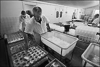 Europe/France/Poitou-Charentes/79/Deux-Sèvres/Villemain: Fromagerie à la ferme de Paul Gorgelet: Le Petit Boisselage - Paul Gorgelet Moule  à la louche ses Chabichous du Poitou