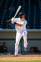 Mesa Solar Sox Brian Anderson (14), of the Miami Marlins organization, during a game against the Surprise Saguaros on October 14, 2016 at Sloan Park in Mesa, Arizona.  Mesa defeated Surprise 10-4.  (Mike Janes/Four Seam Images)