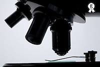 Microscope  lenses, close-up (Licence this image exclusively with Getty: http://www.gettyimages.com/detail/73013960 )