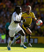 Bafetimbi Gomis of Swansea and Valon Behrami of Watford   during the Barclays Premier League match Watford and Swansea   played at Vicarage Road Stadium , Watford