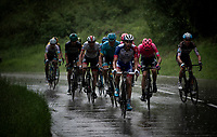 Thibaut Pinot (FRA/Groupama-FDJ) & co <br /> <br /> Stage 7: Saint-Genix-les-Villages to Pipay  (133km)<br /> 71st Critérium du Dauphiné 2019 (2.UWT)<br /> <br /> ©kramon