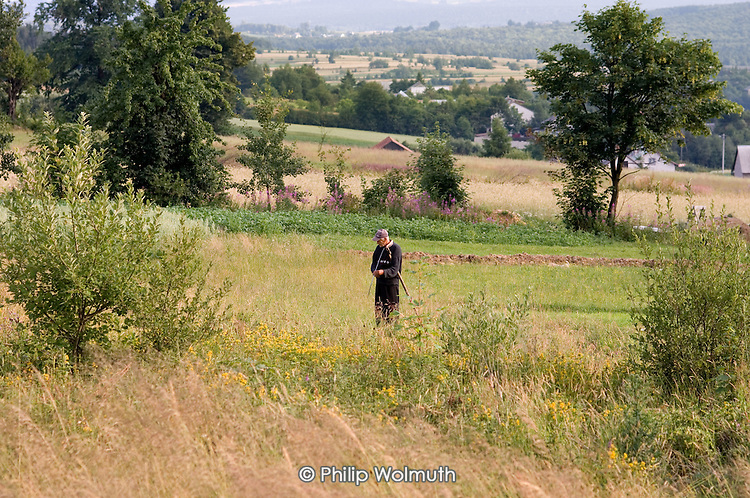 An elderly man with a scythe on farmland in south-eastern Poland