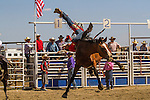 Crow Fair Rodeo Action