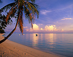 Bora Bora, French Polynesia   <br /> Coconut Palm and tropical evening clouds over calm waters of Bora Bora lagoon with boats anchored off Matira beach<br /> with the tropical waters of Bora Bora lagoon