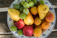 Variety of fresh summer fruit on a plate.