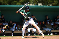 Plymouth State Panthers Eric Leitch (14) during the second game of a doubleheader against the Edgewood Eagles on March 17, 2015 at Terry Park in Fort Myers, Florida.  Edgewood defeated Plymouth State 9-2.  (Mike Janes/Four Seam Images)
