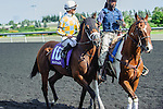 Matador(10) with Jockey Julien R. Leparoux aboard at the 155th Queen's Plate at Woodbine Race Course in Toronto, Canada on July 06, 2014.