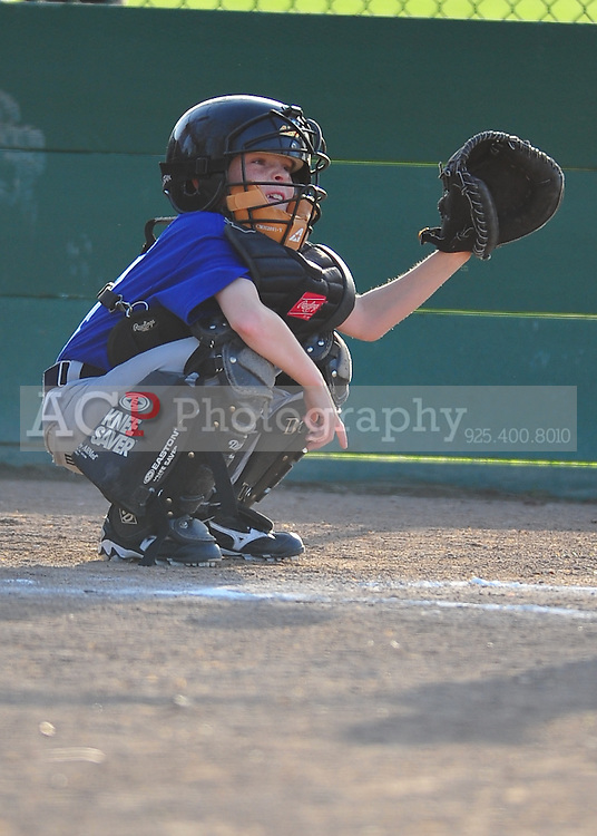 The Pleasanton National Little League A Cubs play at the Pleasanton Sports Park Thursday March 18, 2010. (Photo by Alan Greth)