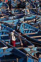 Afrique/Afrique du Nord/Maroc/Essaouira: Le port, Barques des pêcheurs