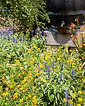 Flower Bed, Jefferson Vineyards