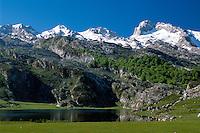 Ercina-See, Picos de Europa, Asturien,  Spanien