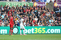 Scott Malone of Huddersfield Town and Luciano Narsingh of Swansea City in front of the eteach stand with adverts from bet365 and Peters Pies during the Premier League match between Swansea City and Huddersfield Town at The Liberty Stadium, Swansea, Wales, UK. Saturday 16 October 2017
