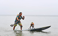 BNPS.co.uk (01202 558833)<br /> Pic: ZacharyCulpin/BNPS<br /> <br /> Pictured: Teamwork a man and his dog just about manage to keep their balance<br /> <br /> Putting their best paw forward hoping to ride the wave of success - Competitors and their dogs take part in the annual Dog Surfing championships.<br /> <br /> The event known as The 'dogmasters' took place today on Bournemouth beach in front of packed crowd, it's the country's only dog surfing and paddleboard championship.