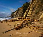 Bowling Ball Beach, Schooner Gulch State Beach, Mendocino County, California