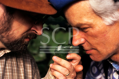 Makande, Gabon. Perfumers Roman Kaiser and Olivier Perault smelling samples in the rainforest.