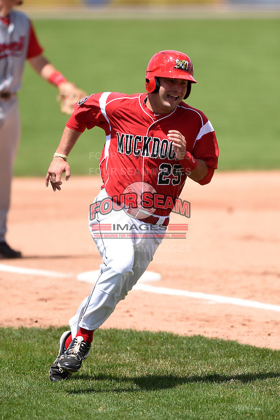 Batavia Muckdogs third baseman Ryan Cranmer (25) scores the go ahead run during a game against the Lowell Spinners on July 17, 2014 at Dwyer Stadium in Batavia, New York.  Batavia defeated Lowell 4-3.  (Mike Janes/Four Seam Images)