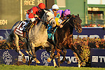 Court Vision, ridden by jockey Robby Albarado and trained by Dale Romans upsets Goldikova and defeats Turralure , ridden by jockey Julien Leparoux by a nose in the TVG Breeders' Cup Mile (G1) at at Churchill Downs in Louisville, Kentucky  on November 5, 2011.