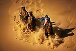 Camal herding by Zay Yar Lin