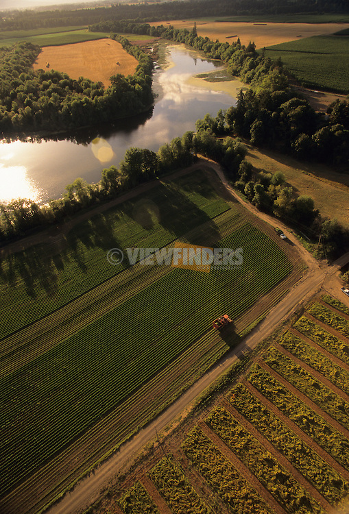 Aerial view of a Willamette Valley farm.
