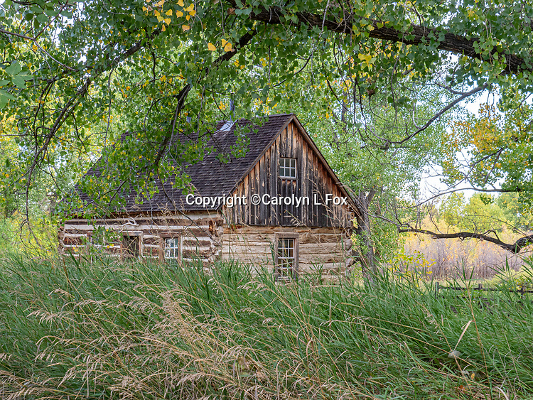 Teddy Roosevelt's old cabin sits inside Theodore Roosevelt National Park.