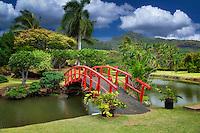 Bridge to japanese Gardens. Smith's Tropical Gardens. Kauai, Hawaii.