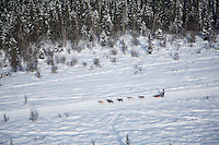 Sunday February 27, 2010   Teams travel on the trail shortly after leaving the start of the Junior Iditarod