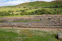 Northumberland,  England, UK.  Vindolanda Roman Fort.
