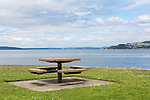Waterfront Picnic Table