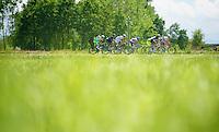 2013 Giro d'Italia.stage 13: Busseto - Cherasco..breakaway group fighting to stay ahead